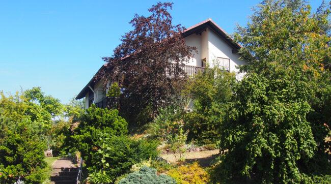 Ferienwohnung Metz (FW) Foto