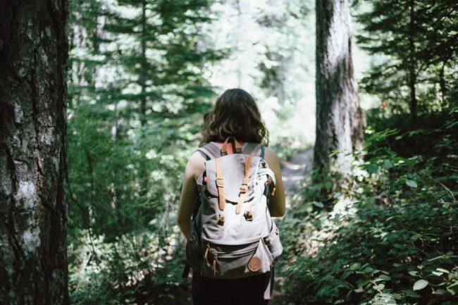 Kräuterführung – Waldschätze Foto